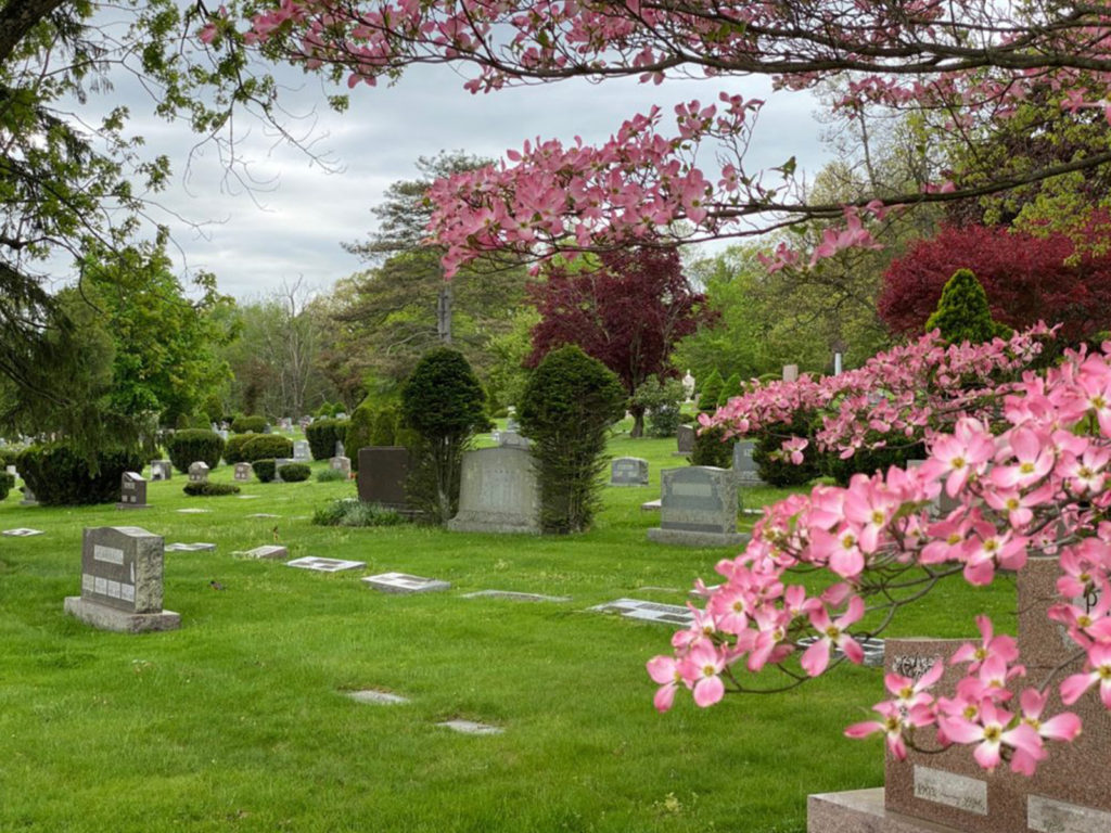 North Lawn Cemetery 02